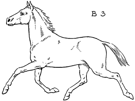 450x337 How To Draw Horses With Easy Step By Step Drawing Lessons