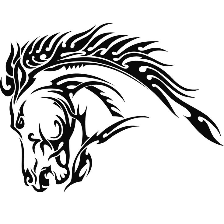736x736 Collection Of Horse Head Tattoo Sketch