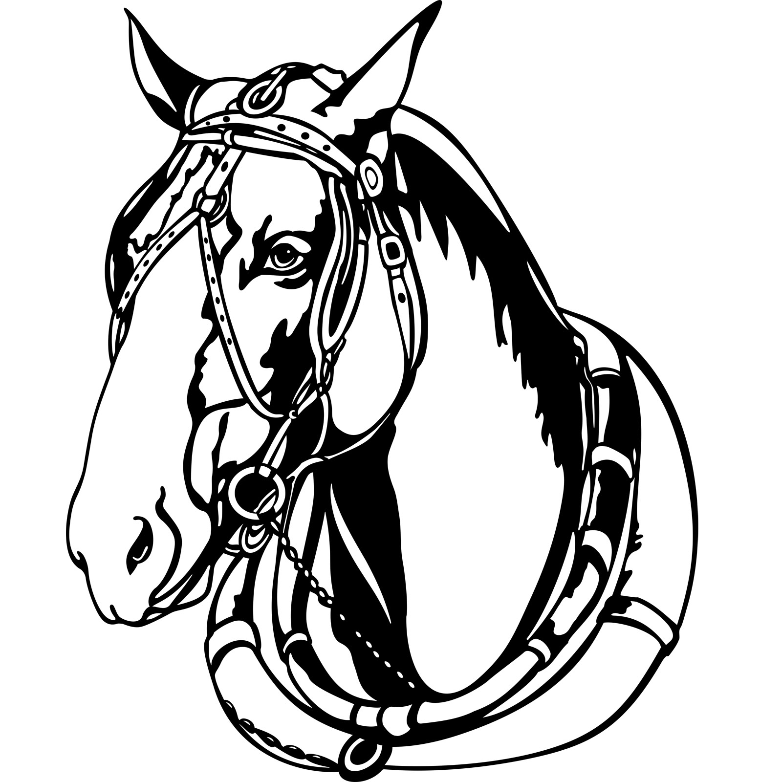 Horse Head Drawing Pictures at GetDrawings.com | Free for personal ...