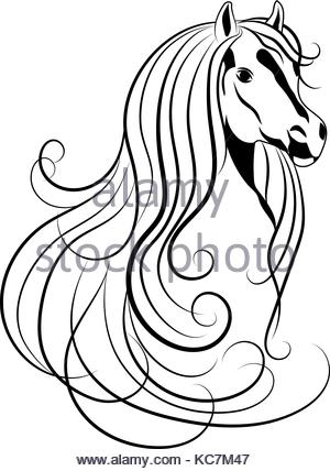 300x428 Sketch Of Horse Head Drawing In Retro Ink Style. Vector
