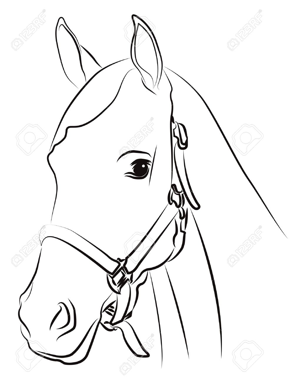 1040x1300 Gallery Horse Head Drawing Outline,