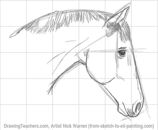 550x455 Horse To Draw How To Draw A Tiger Animals Tigers