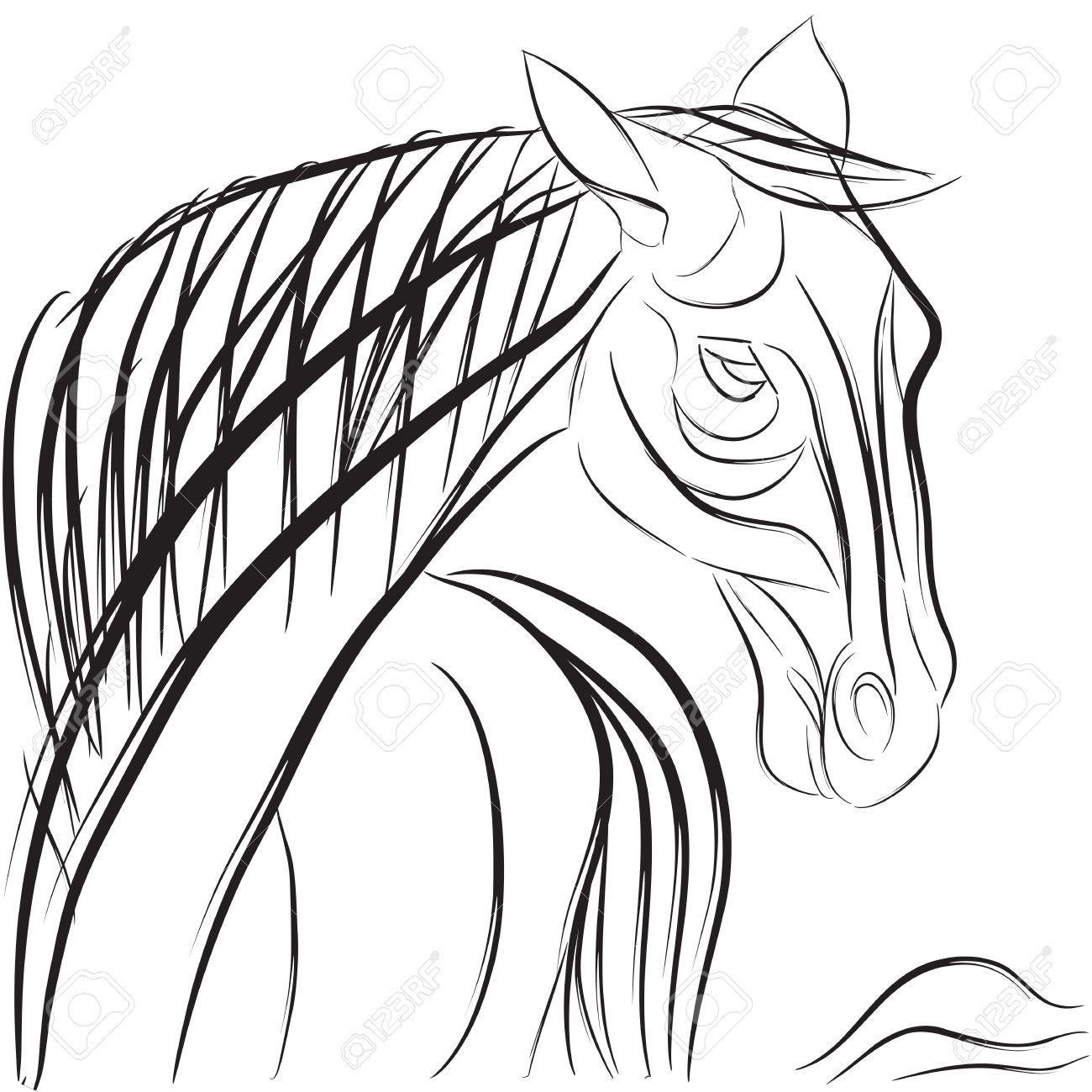 1300x1300 Drawn Profile Horse Head