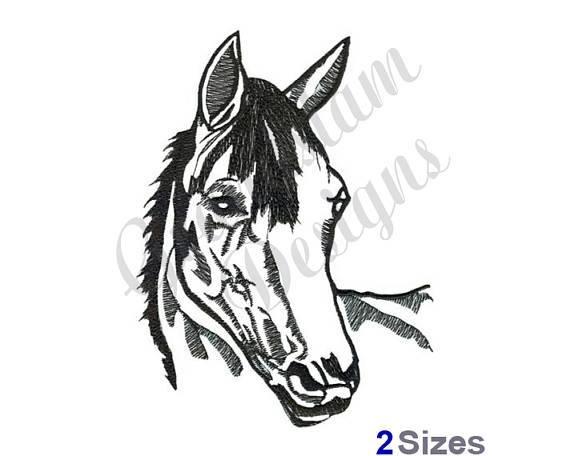 570x456 Horse Head