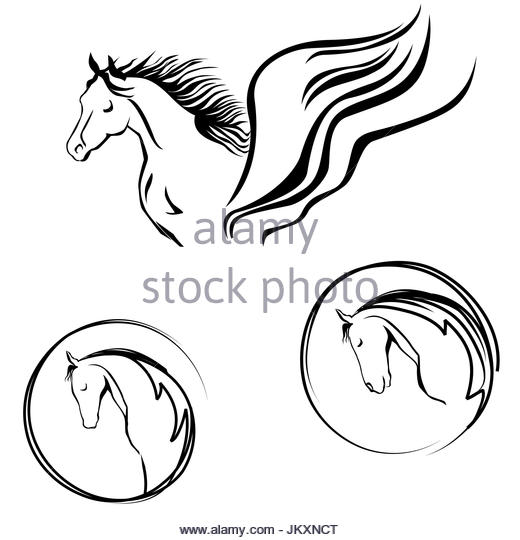 520x540 Horse Head Cut Out Stock Images Amp Pictures