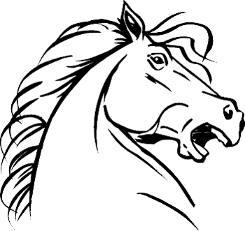 350x331 How To Draw A Mustang Horse Head
