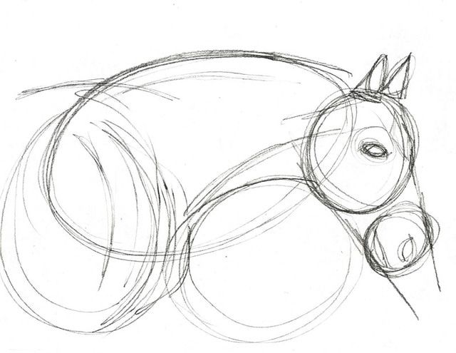 Horse Hoof Drawing