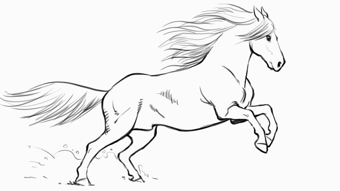 1152x648 How To Draw A Horse