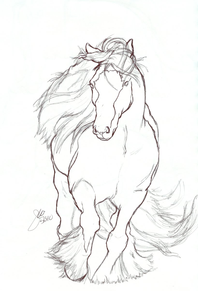 819x1200 Horse Drawing ~ 3d Drawing