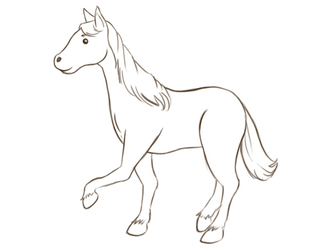 640x485 How To Draw A Horse Horse Fun