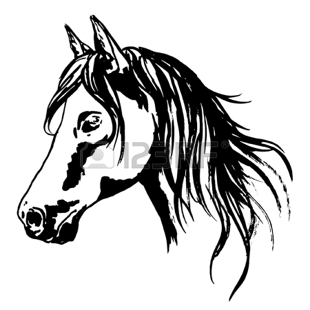 450x450 Horse Head Painted Portrait With Raising Main. Hand Painted