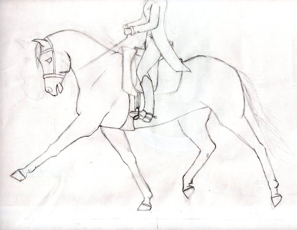 1017x786 Ink Drawing In Progress (