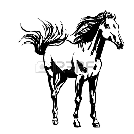 450x450 Ink Painted Portrait Of The Proud Horse, Standing With Raised