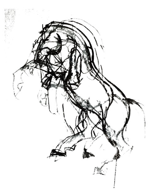 500x635 Prancing Horse Ink By Kasia Dippel Horses Art