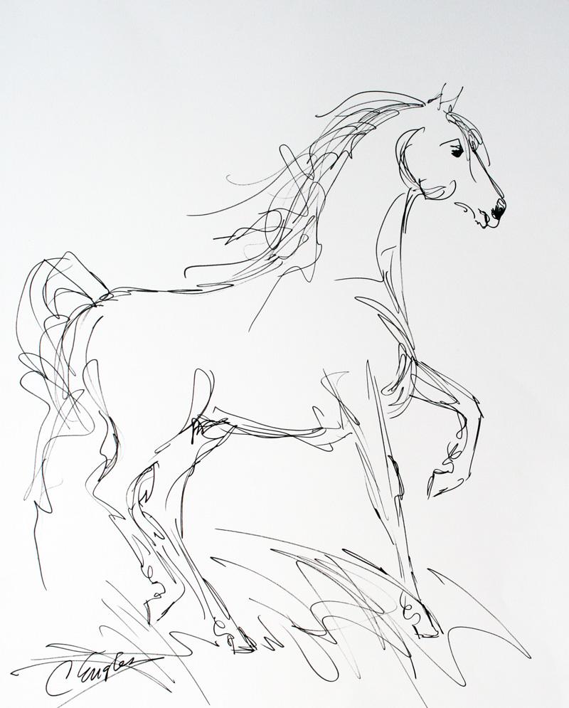800x995 Saddlebred Horse, Ink Drawing By Carol Engles Original Art