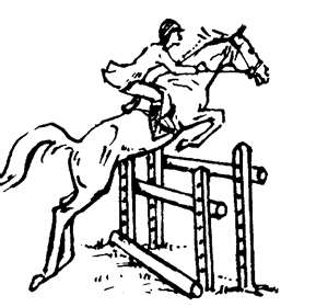 300x280 Horse Traders Tales From A Bad Eventer