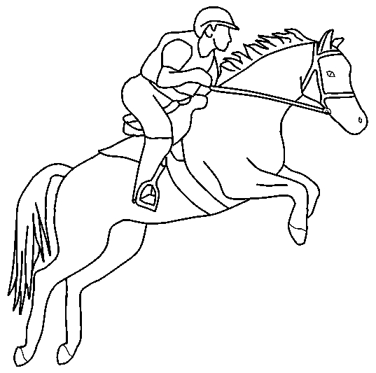 537x533 Jumping Horse Line Art By Avery018