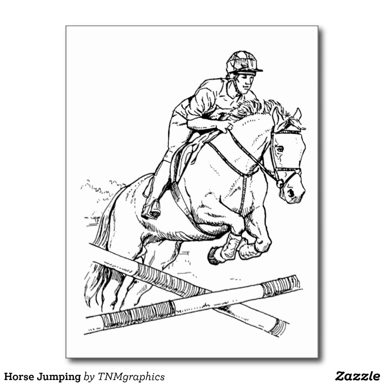 756x756 Line Drawing Of A Rider Jumping A Horse Over A Barrier. Draw