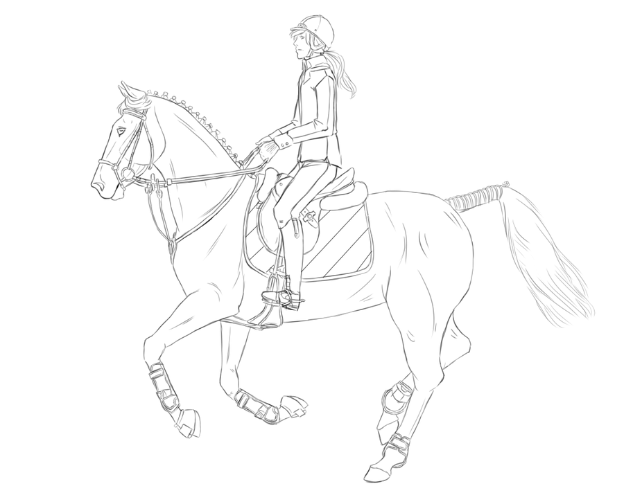 900x715 Show Jumping Lineart By Stableofares
