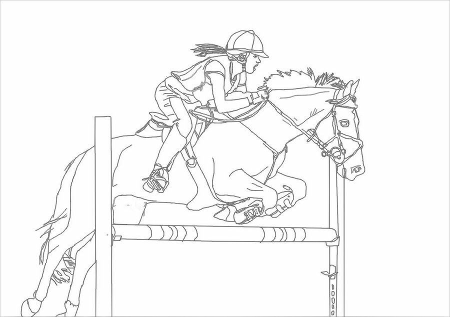 900x634 Show Jumping Lineart By Luovaa