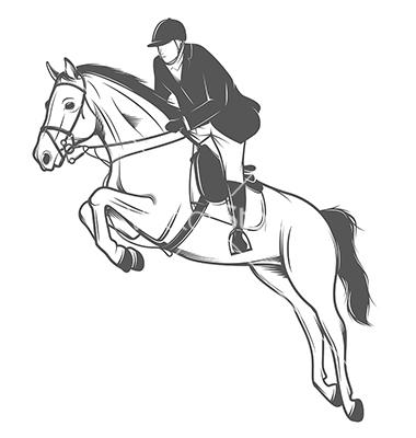 380x400 Equestrian Sport Jockey On A Jumping Horse VectorStock Eddie
