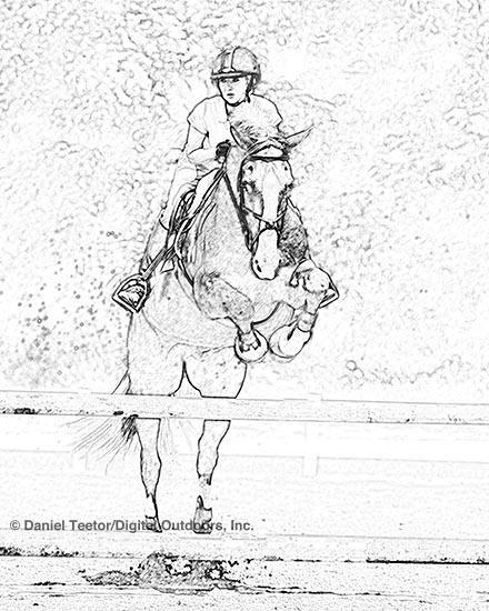 440x550 Horse Jump Drawing