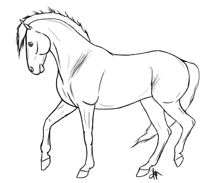 676x612 Free Horse Lines 2 By Equidedesigns Como Dibujar