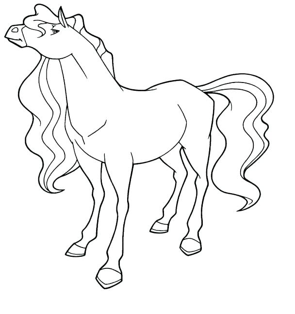 608x647 Horseland Horse Coloring Pages Terrific For Line Drawings
