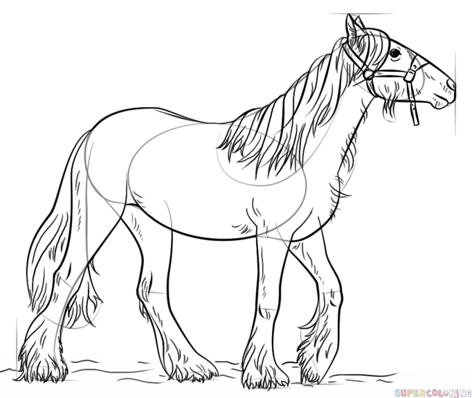 682x575 How To Draw A Gypsy Vanner Horse Step By Step Drawing Tutorials