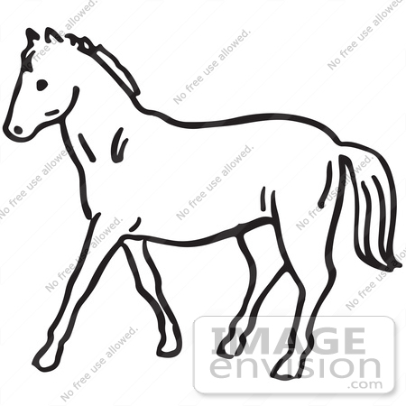 450x450 Drawn Horse Black And White