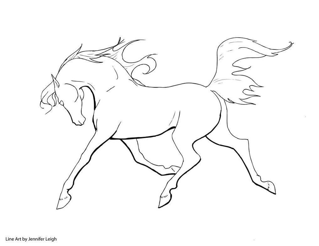 1017x786 Free Arabian Horse Line Art By Jennyleigh