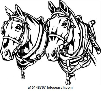 350x316 Horse Line Drawings Clip Art Illustration, Lineart, Animal