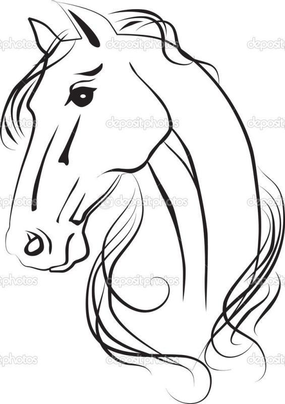 565x800 Horse Line Drawing Clip Art