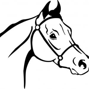 300x300 Creative Inspiration Horse Head Clip Art Line Drawings 24 Drawing