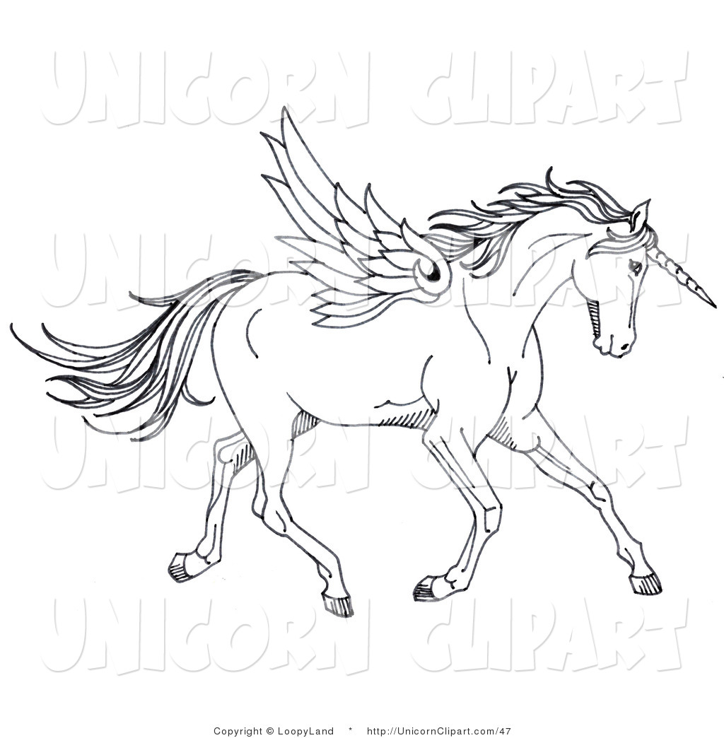 1024x1044 Fantasy Clip Art Of A Black And White Winged Unicorn Horse By