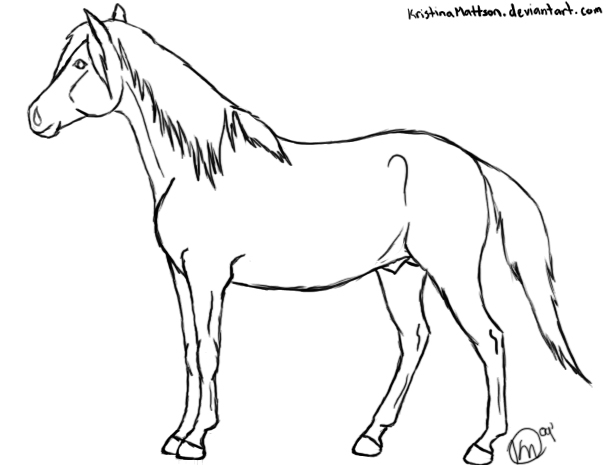 608x465 Horse Standing Drawing Horse Standing On Two Legs Drawing