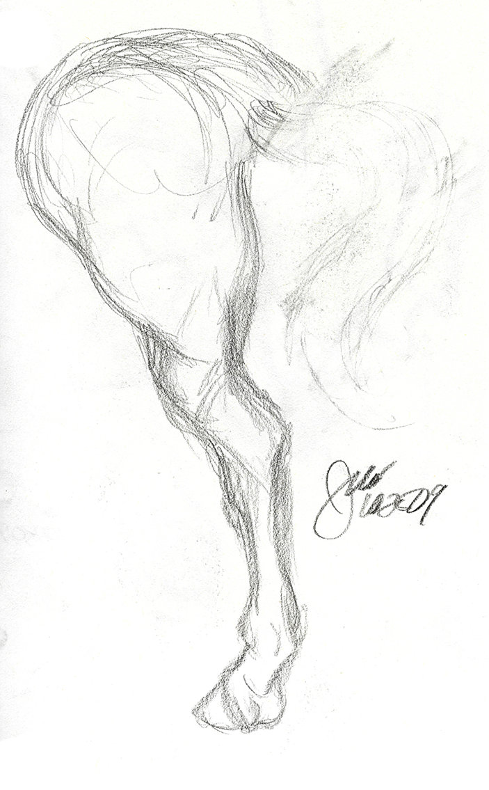 703x1135 Pencil Drawings Of Horses On Hind Legs Horse Leg Study By Elipse