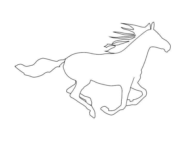 Horse Outline Drawing