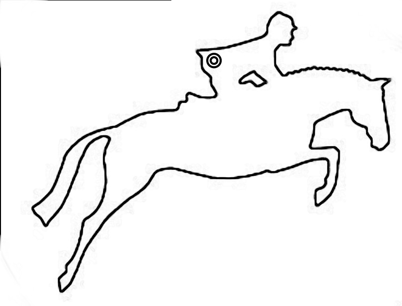 807x615 Jumping Horse Outline Drawing