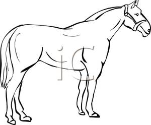 300x248 Outline Drawing Of Domestic Animals
