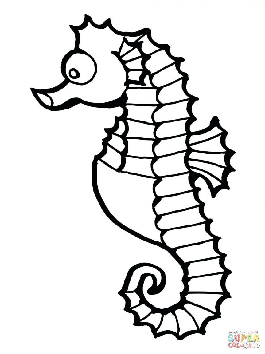 863x1151 Seahorse Fish Outline Coloring Page Clipart Picture Of Seahorse