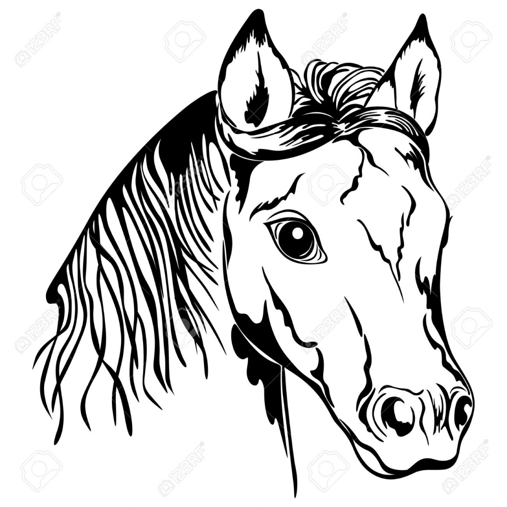1024x1024 Black White Drawings Of Horses Outline Of Horse Head Black