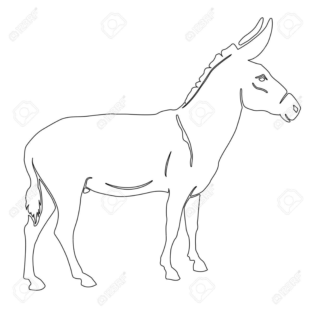 1300x1300 Donkey Outline Drawing Stock Photo, Picture And Royalty Free Image
