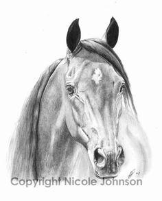236x293 Sam Kwpn Horse Portrait. Graphite Paper. Portrait