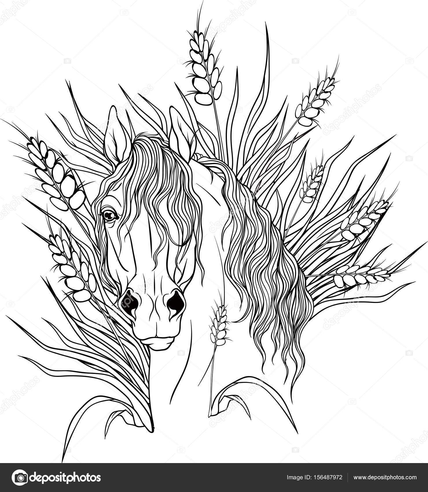 1479x1700 Coloring Page With A Portrait Of A Horse. Stock Vector