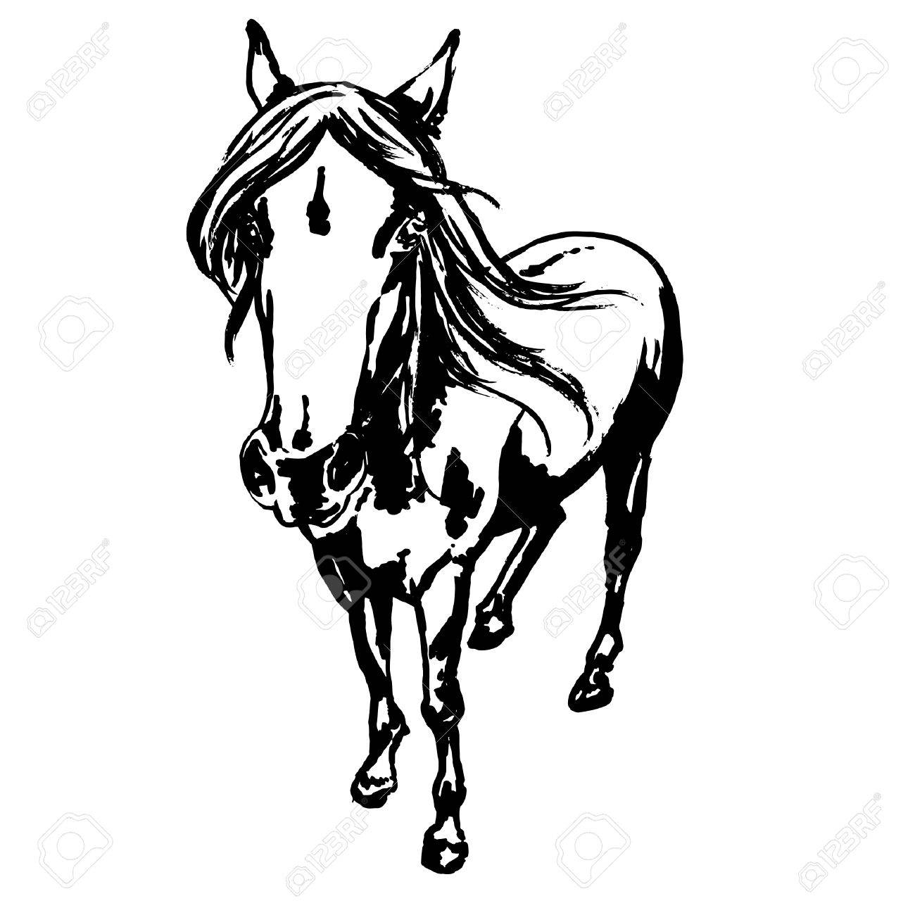 1300x1300 Cute Horse Portrait, Ink Painted Illustration Of Beautiful