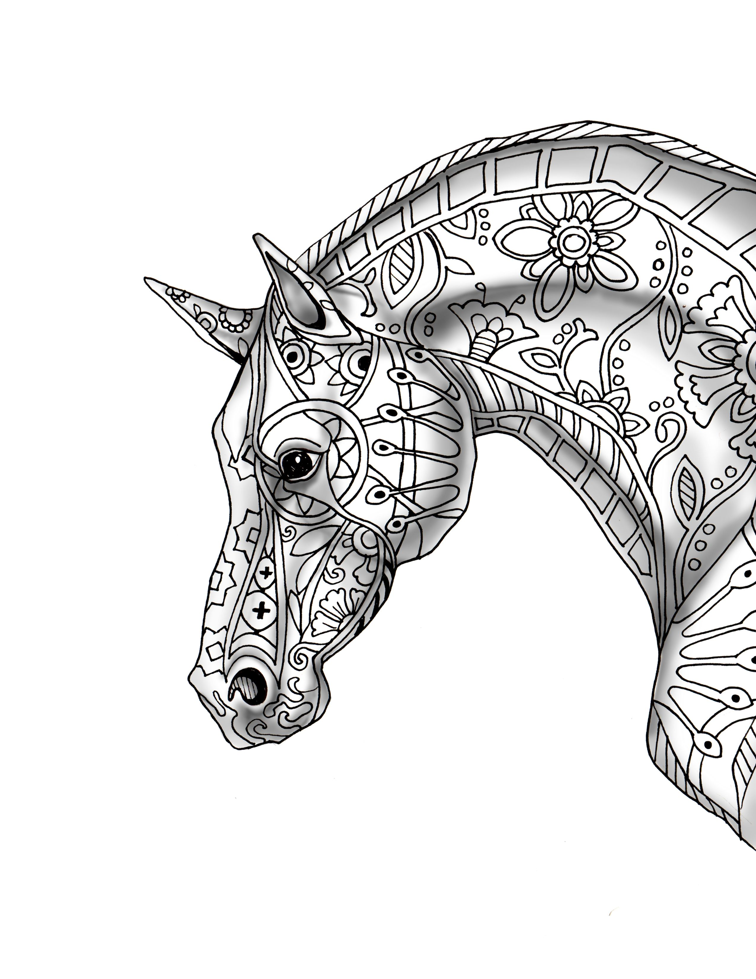 Horse Profile Drawing