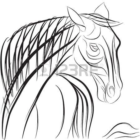 450x450 Horse Head Profile With Mane And Tail, Hand Drawn Sketch
