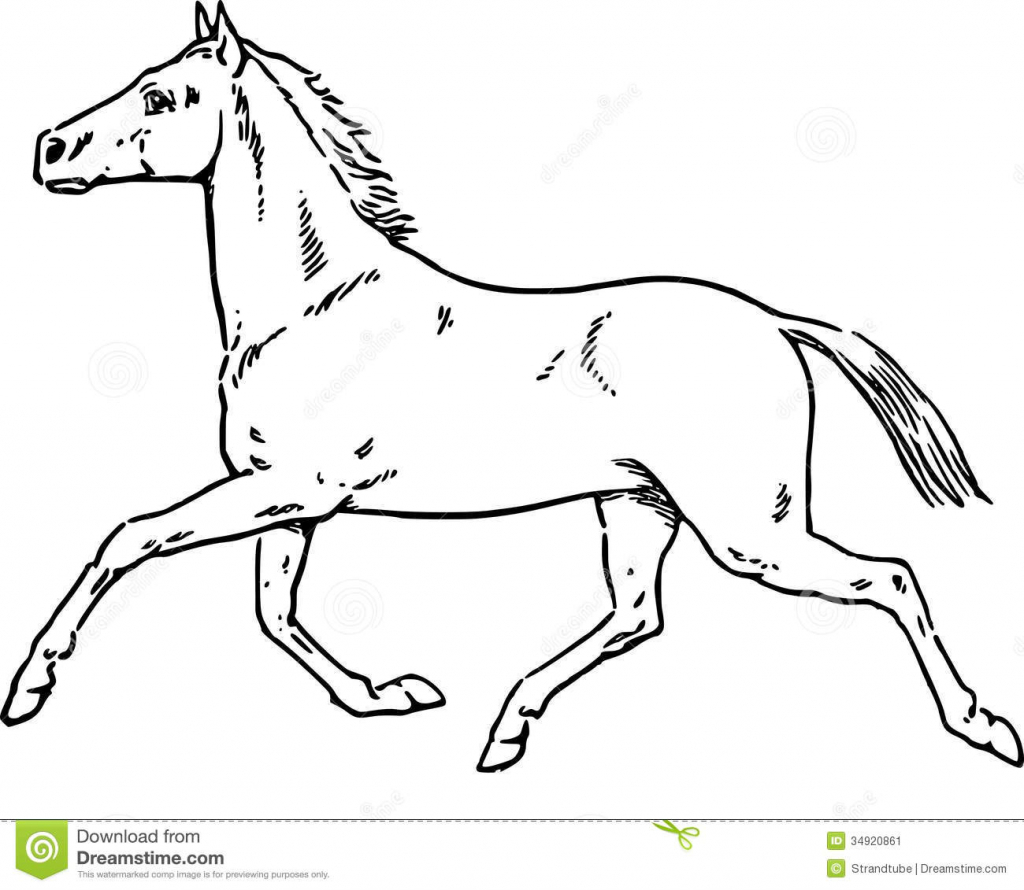 1024x890 Horse Picture Drawing Best Photos Of Horse Profile Drawing Horse