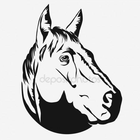 450x450 Horse Profile Graphic Logo Template Stock Vector Samorodinov